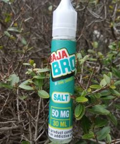 Game Changer's Baja Bro Salt Nic